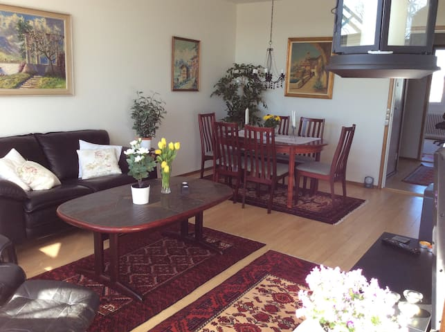 Bright and nice apartment - with enclosed balcony - Ballerup - Apartamento