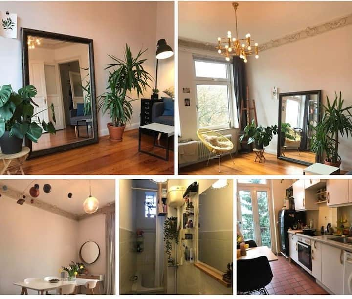 Charming,Modern and clean Apartment in the City Ce