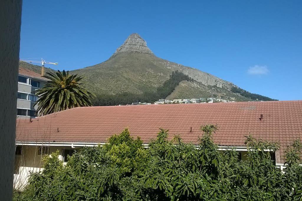 View of Lions Head Mountain from apartment