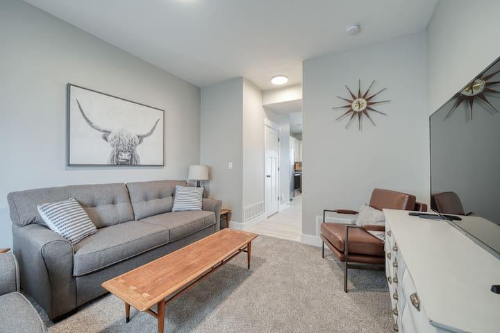 Living room with smart TV and sofa-sleeper.