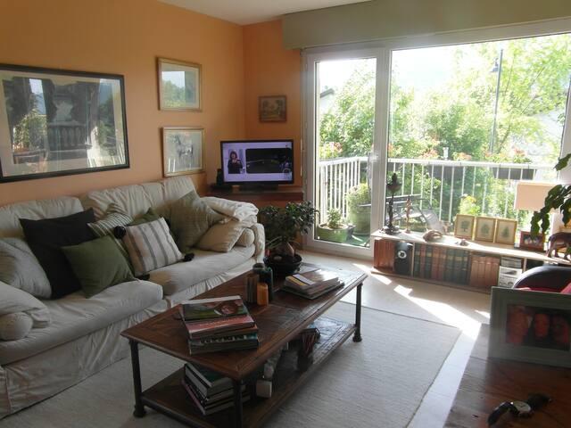 appartement avec terrasse - Annecy-le-Vieux - Wohnung