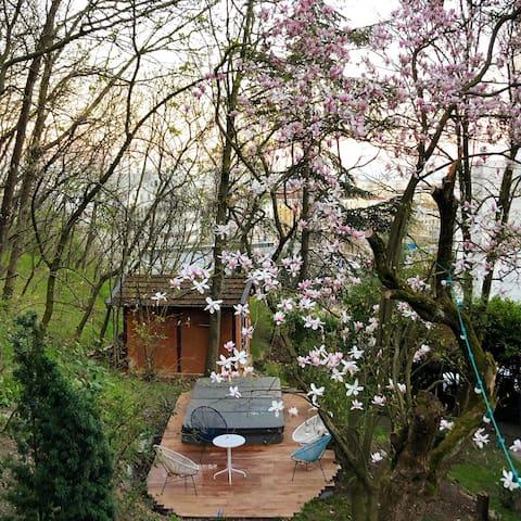 Jardin et jacuzzi au coeur de Lyon