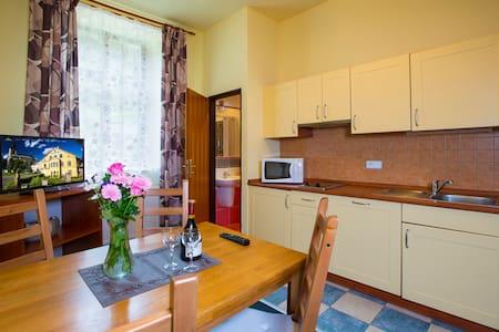 Three pers. apartment in YELLOW SKI - Rokytnice nad Jizerou - Apartment