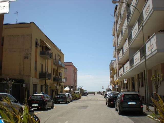 pet friendly vacation rentals, apartments & houses in marina di, Hause ideen