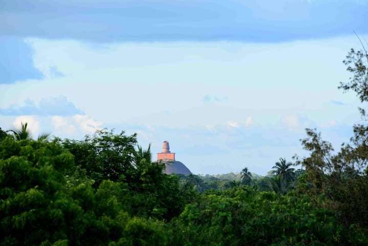 Sacred City Tourist Resort - Anuradhapura - House