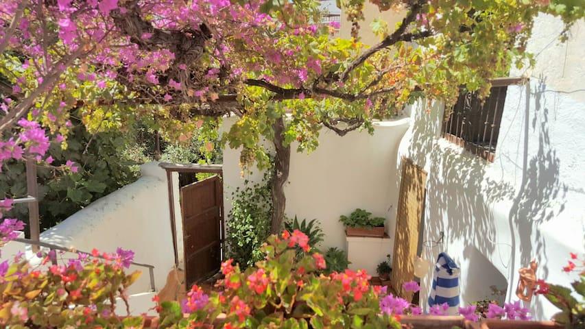 Amplia y singular casa de pueblo cerca de Almería - Gérgal - 一軒家