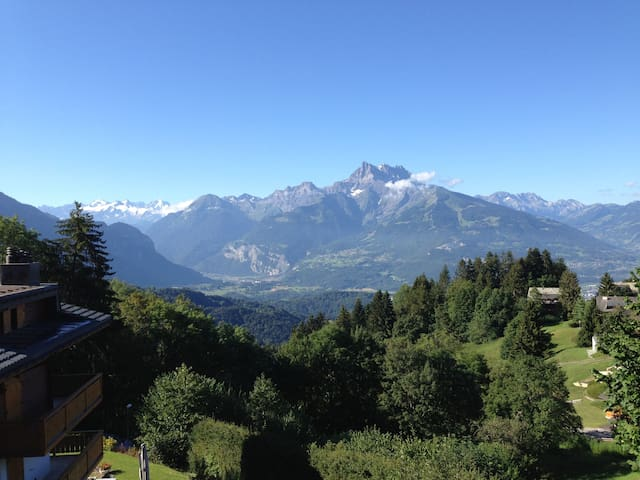 Huge Villars apartment; best view in the Alps - Chesières