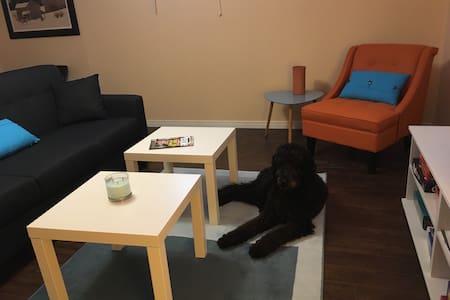 Warm & Spacious 1 Bedroom Apartment - Peterborough - Dom