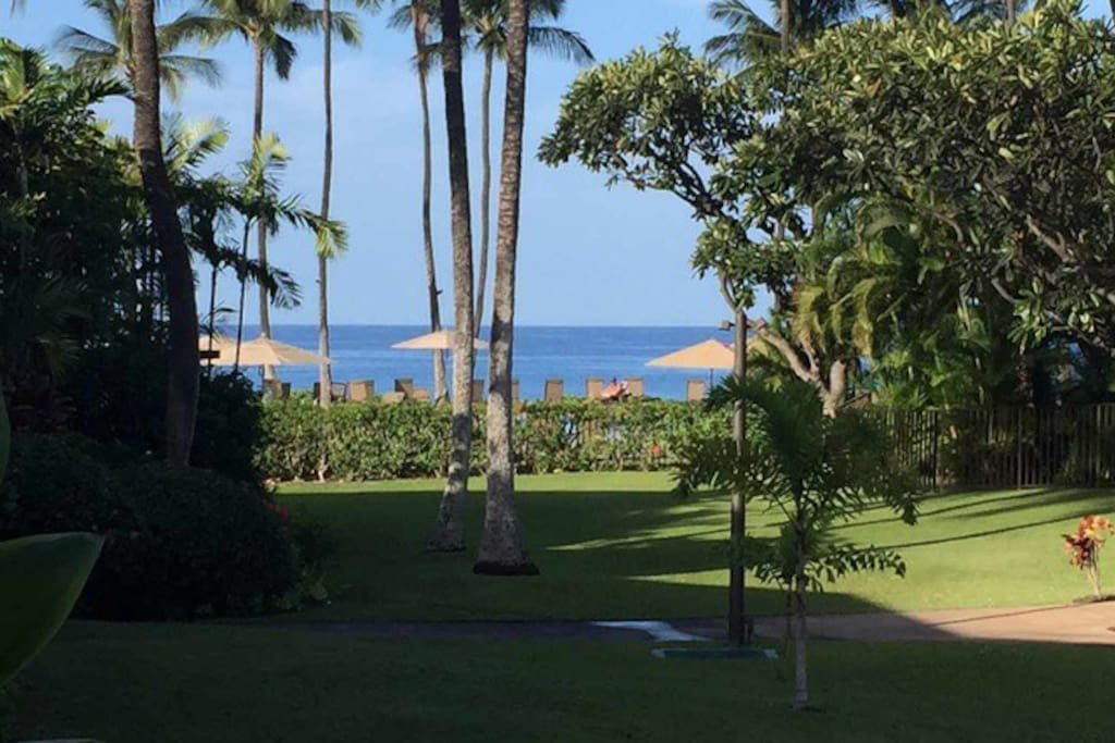 Ocean view from our patio. We are just steps to the oceanfront pool and pavillion.