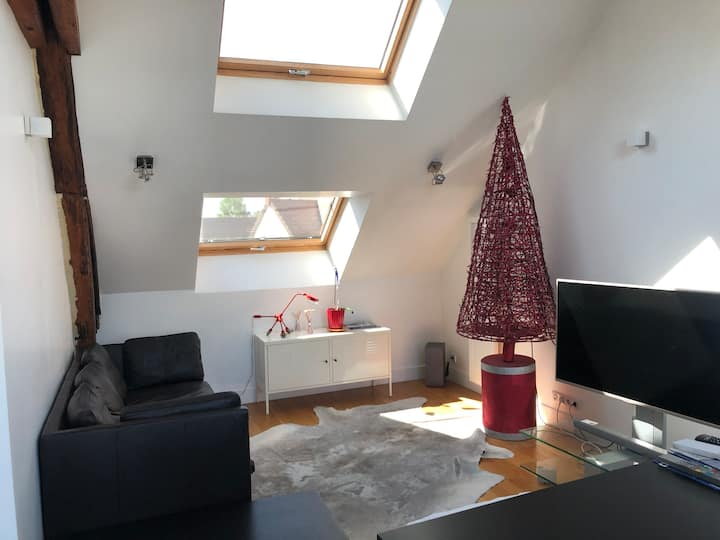 Appartement 4 couchages a Roissy en France