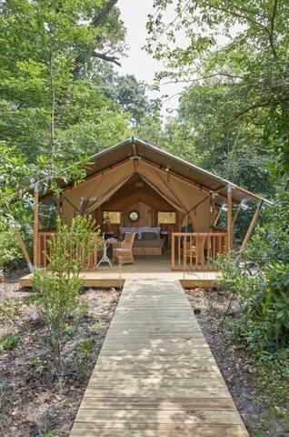 Lodge à l'orée du bois