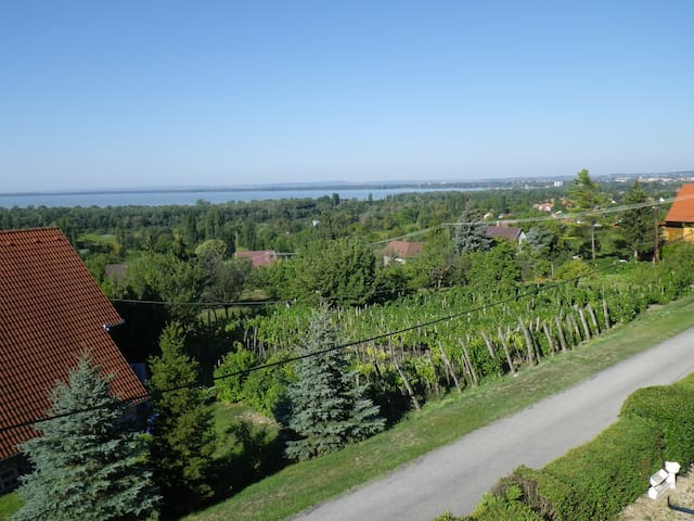 Panoramic view amongst the vineyards - Gyenesdiás - Casa