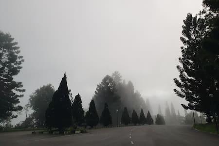 Meranti Suites Berjaya hills Colmar Tropicale 高原民宿