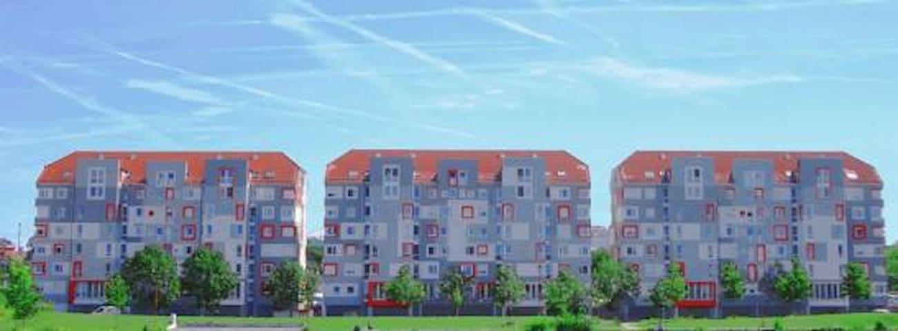 Großes Wohnheimzimmer in Mannheim