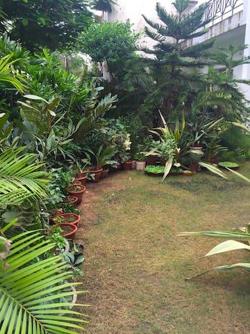 Royal Palms Home Stay - Agra - House