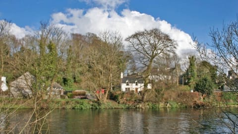 Woodbank Cottage Cosy with a river side garden.
