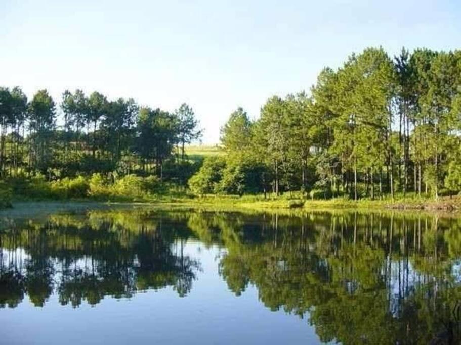 lago em frente