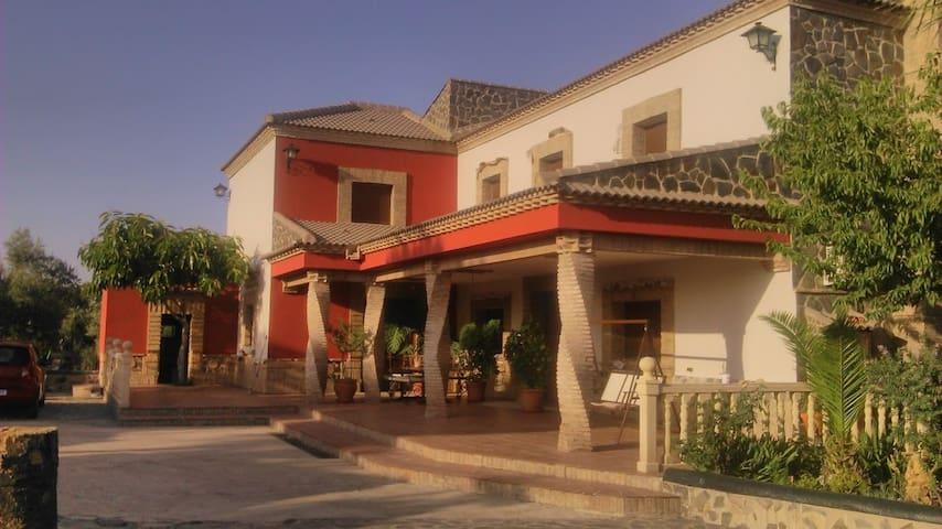 Casa rural El Madroñal - Montoro - House