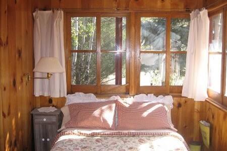 Charming  historic log cabin - Estes Park