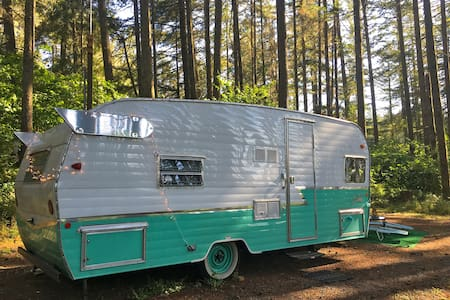 Retro RV in the Woods at Vegan Animal Sanctuary - Eugene - Camper/Roulotte