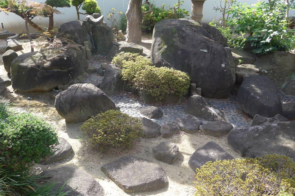 The bright and spacious garden.