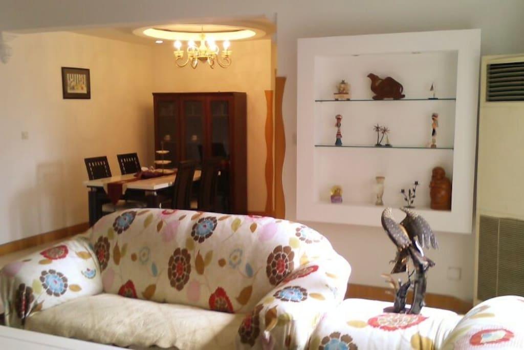 客厅和餐厅(living room,Wohnzimmer)