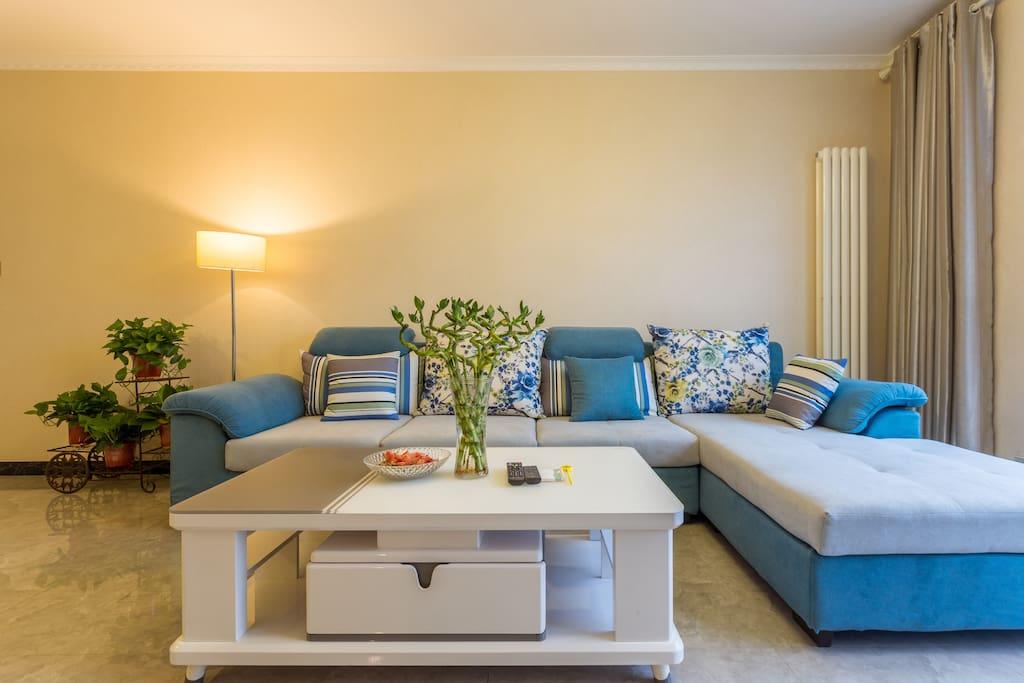 沙发茶几和绿叶