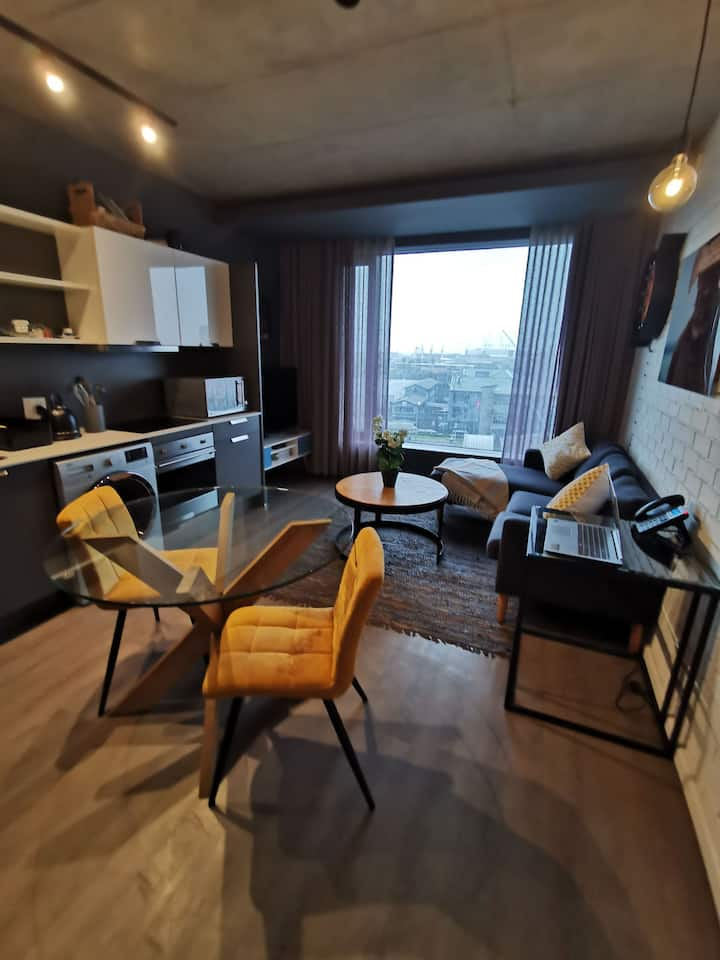 Modern Fancy Fully Furnished Apartment