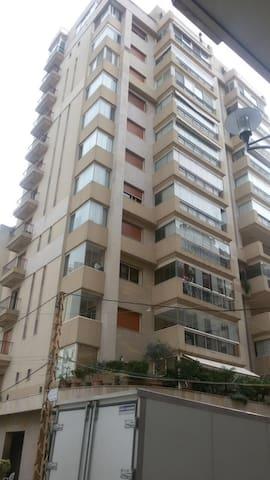 Beautiful New Apt. Central Beirut - Beirut - Apartment