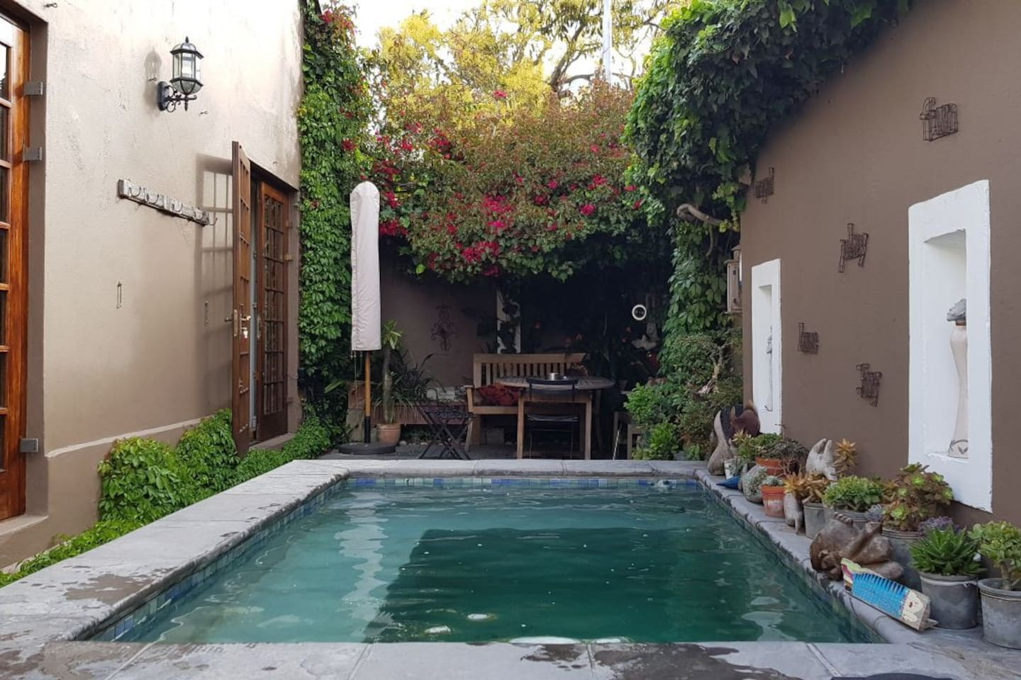Sunny Courtyard with pool, deck and natural shade. Lovely breakfast spot