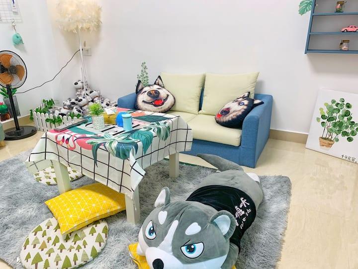 汕尾【十年民宿公寓】ins森系二哈风·亲民一房一厅厨卫502房