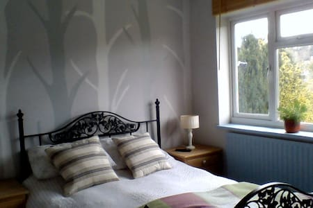 Charming, light and bright double bedroom - Godalming - Ház