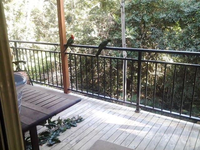 Tranquil Rainforest Retreat - North Avoca - Apartemen
