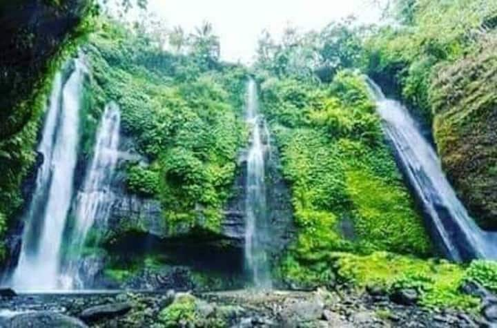Sugigede mountain view room sekumpul waterfall