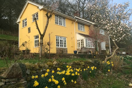 THE COTTAGE - FOREST OF DEAN - Gloucestershire - Ev