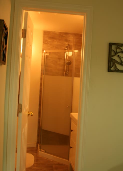 private washroom with shower