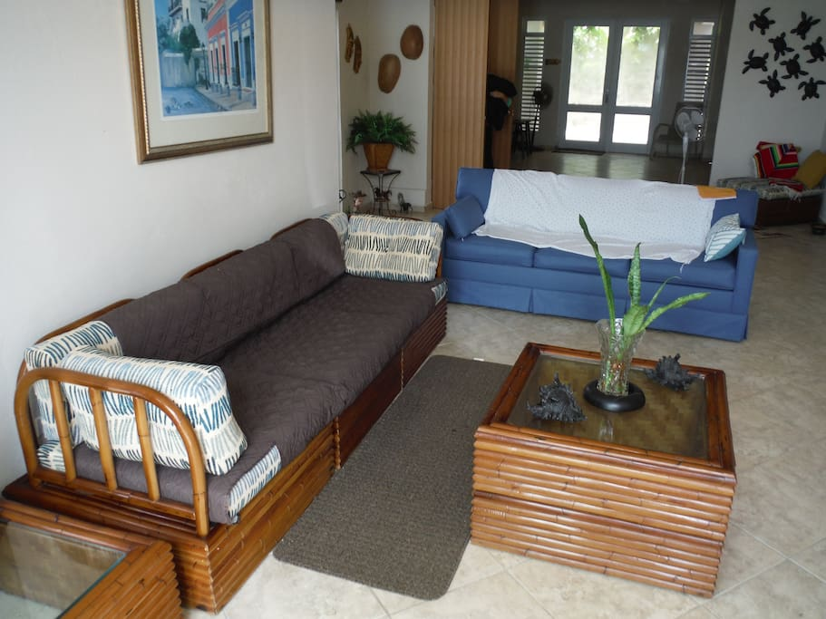 Living Room - The blue couch is a pullout