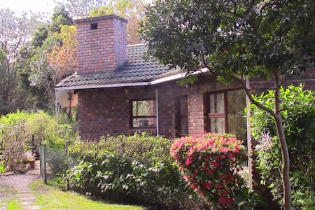 Forest Nest Cottage - Stormsrivier