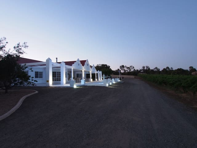 1837 Barossa Luxury  Vineyard Cottage S Australia