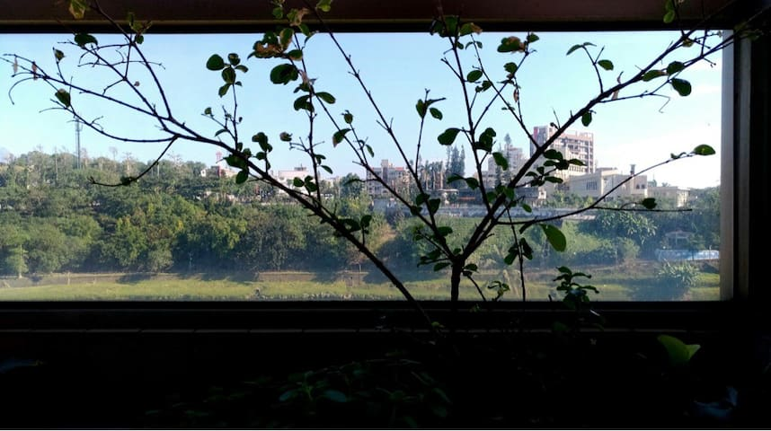 陽台貫穿客廳與房間,看到的風景也特別遼闊。  Can you resist a room with a view like this?