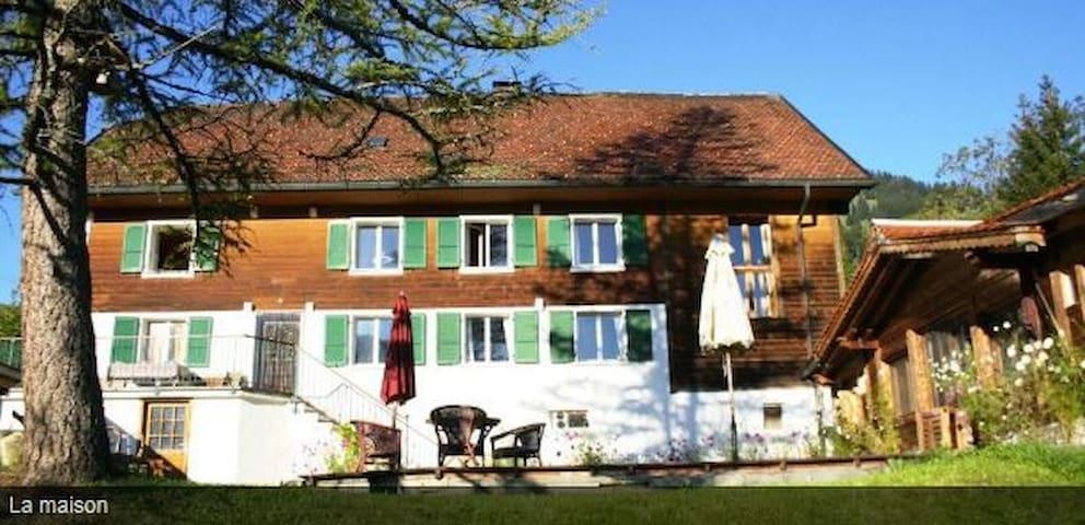 Appartement  indépendant dans ferme rénovée - Cerniat Val-de-Charmey - Apartment