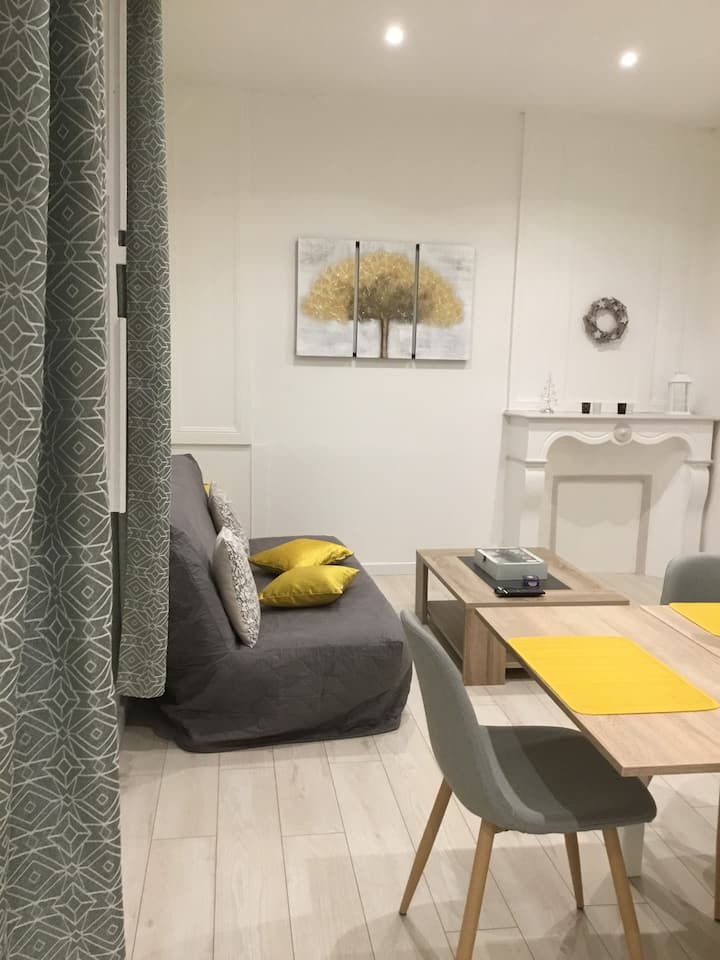 Charmant Appartement T2 Centre ville SAINT-BRIEUC