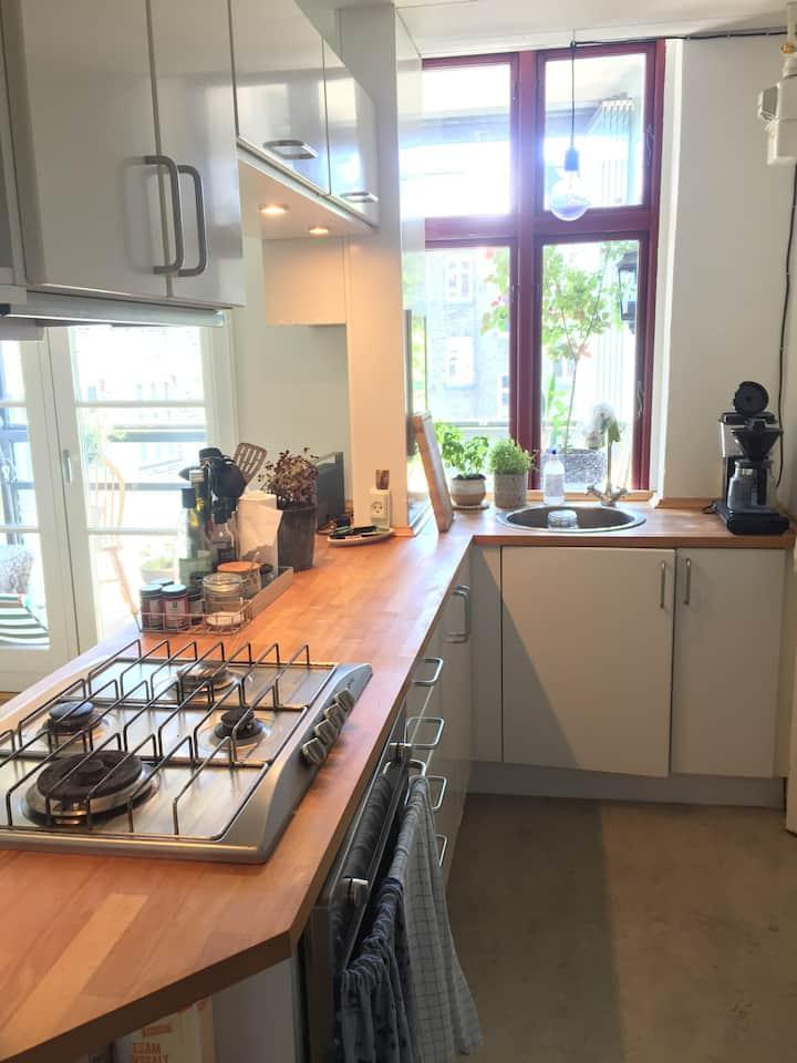 Cozy apartment in Frederiksberg