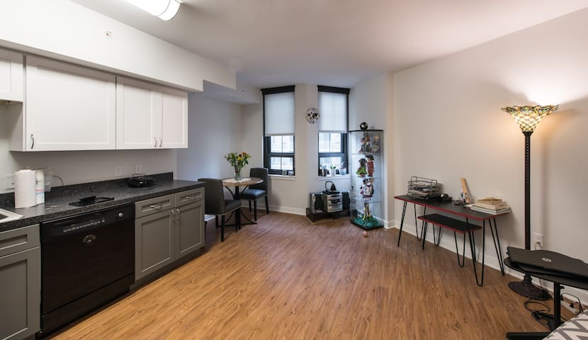 Large Studio Apt Near Washington DC - Silver Spring - Apartment