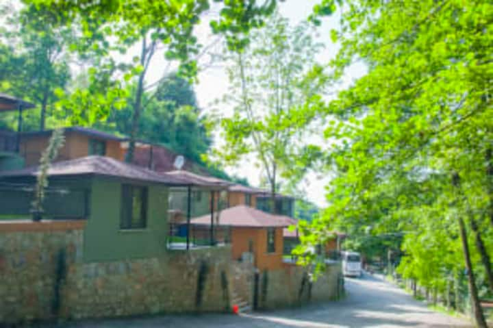 1 BR Bungalow House Surrounded by Nature in Kartepe