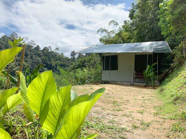 Plateau Farm Cabin Camp, Janda Baik