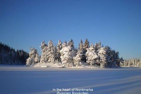 I hjertet av Nordmarka (Ringerike) Hønefoss - Hønefoss - Blockhütte