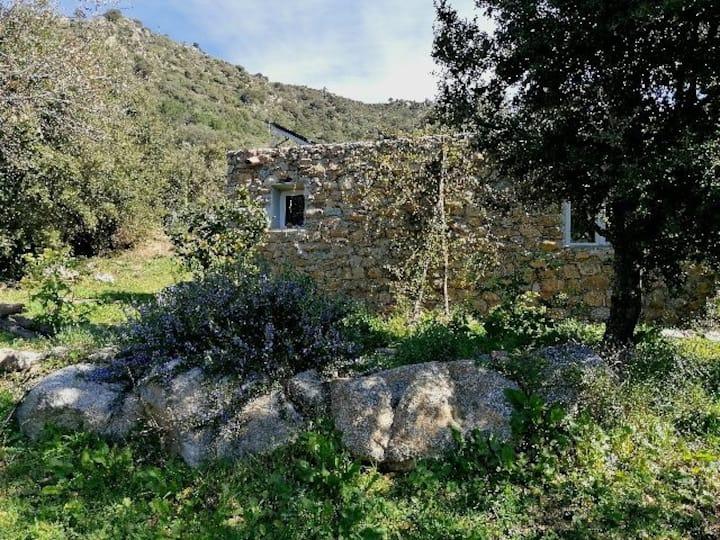 Maison en Pierre, énergie solaire,pleine nature.