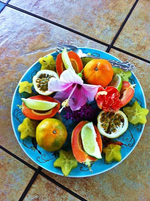 Organic fruit platter  at Ocean Breeze Hideaway