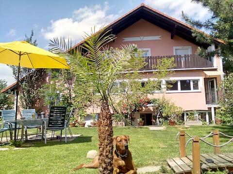 Großes Landhaus für 2-10 Gäste WACHAU,Wien 50 min.